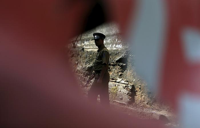 На Шри-Ланке арестовали двух россиян за сбор мертвых жуков