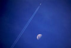 Минтранс РФ заявил, что говорить о датах возобновления международного авиасообщения пока рано