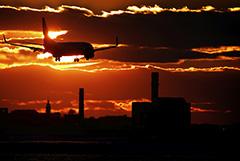 IATA ухудшила прогноз падения пассажирских перевозок в 2020 году до 55%