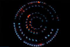 Независимые производители газа пропали с Петербургской биржи в июле