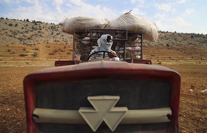 Взрывы в порту Бейрута уничтожили почти все запасы зерна