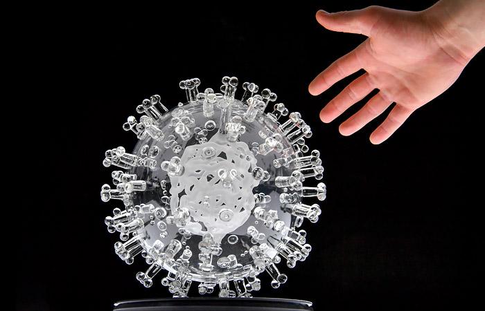 Академик РАН заявил, что в перспективе коронавирус будет побежден