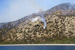 Ликвидирован пожар в заповеднике под Анапой