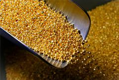Fitch предрек РФ лидерство в производстве золота в мире к 2029 году
