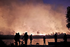 В Воронежской области площадь природных пожаров превысила 320 га