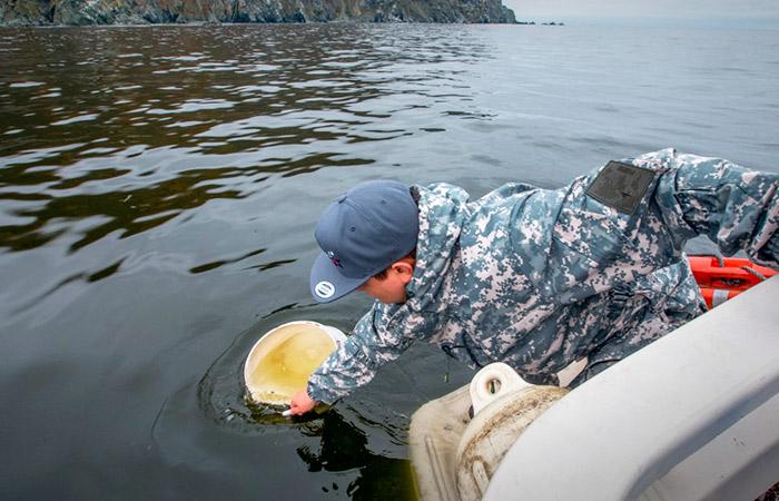 Взятые на Камчатке пробы воды и грунта будут готовы к вечеру понедельника