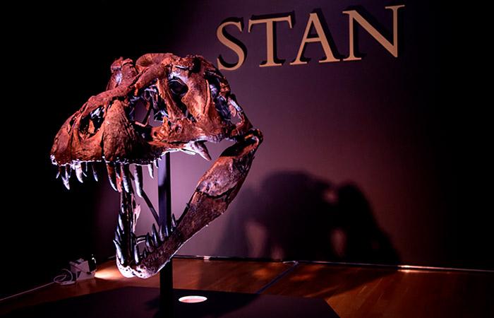 Скелет тираннозавра продали на торгах Christie's за рекордные $32 млн
