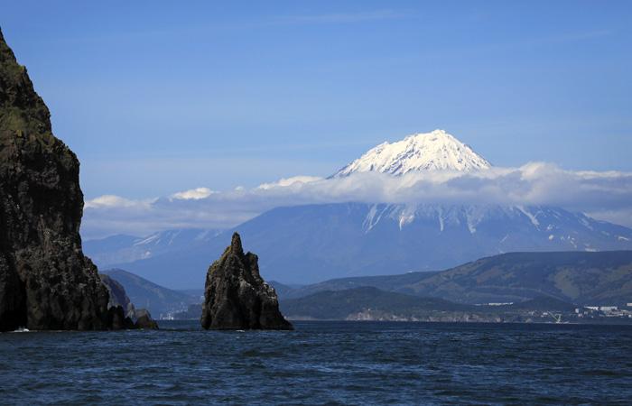 Ученые сочли самой вероятной версию загрязнения Камчатки водорослями