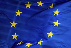 """ЕС ввел санкции против шести физлиц и одного НИИ по """"делу Навального"""""""