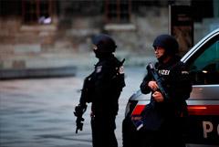 Kronen Zeitung сообщила о задержании в Линце одного из террористов