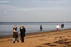 Литва и Латвия поставили антирекорды по заражениям и смертям от COVID