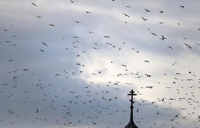 СМИ сообщили о кончине Сербского патриарха от коронавируса