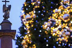 Власти Петербурга попросили туристов не приезжать в город на Новый год
