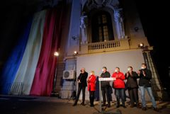 Оппозиция побеждает на парламентских выборах в Румынии