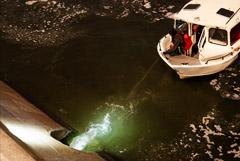 В Москву-реку из коллектора попала неизвестная зеленая жидкость