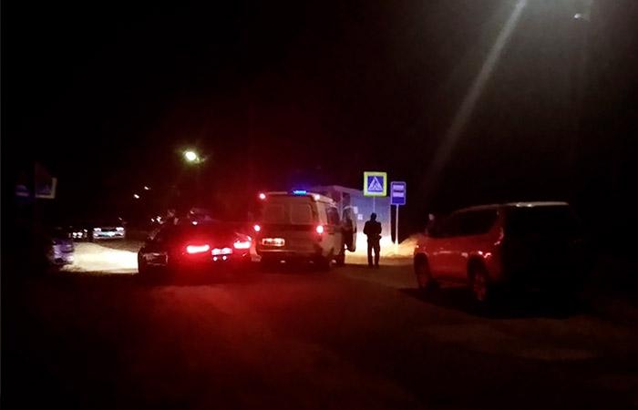 От стрельбы в Нижегородской области пострадала бабушка нападавшего