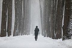 Жителям Москвы и области пообещали легкий мороз и снег на Рождество