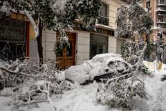 Мадрид не получил новую партию вакцины от COVID-19 из-за снегопада