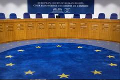 ЕСПЧ счел необоснованными обвинения Грузии по событиям августа 2008-го