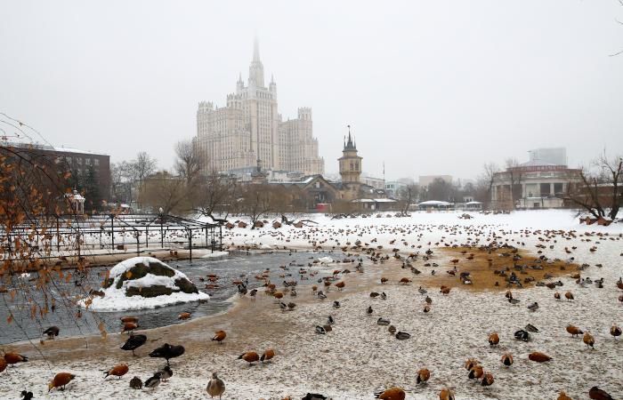 Самый теплый день зимы зафиксирован в Москве