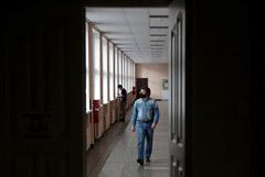 Студенты в РФ смогут выбирать между традиционным и онлайн-обучением