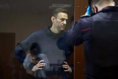 Навальный не признал вину в суде по делу о клевете на ветерана
