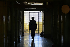 Лишь 29% осужденных в РФ в 2020 году получили реальные сроки