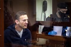 Заседание по делу Навального о клевете на ветерана отложили на 16 февраля