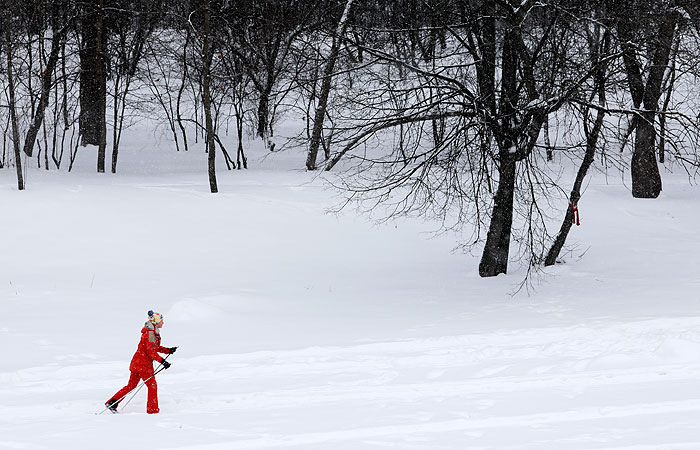 До 4 см снега выпадет в Москве к полуночи