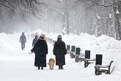 Жителей Москвы и области предупредили о сильном морозе 23 февраля