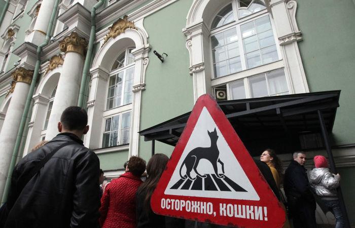 В России появится профсоюз музейных котов