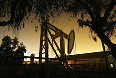 Нефть подорожала на данных о неожиданном сокращении запасов в США