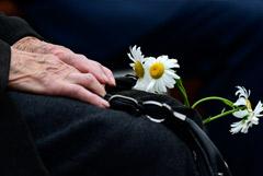 Дума приняла закон о лишении свободы за унижение чести ветеранов