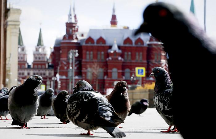 Москвичей призвали не ждать бурного наступления весны в ближайшие дни