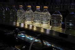 Минсельхоз РФ подготовил постановление о субсидиях производителям сахара и масла