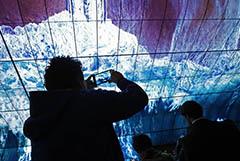 LG Electronics прекратит выпускать смартфоны