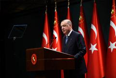 Эрдоган пока не нашел необходимости выходить из конвенции Монтрё