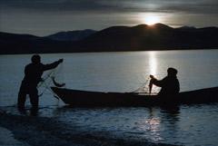 В море Лаптевых нашли регион с потенциалом на нефть и газ, как в Западной Сибири
