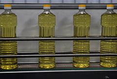Аналитики сообщили об обвале цен на подсолнечное масло