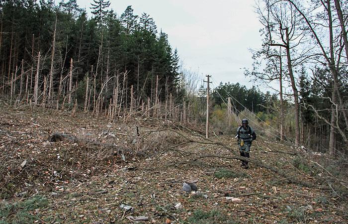 Президент Чехии заявил, что нет данных об агентах из РФ во Врбетице