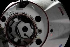 Рогозин опроверг переговоры о полётах космонавтов на Crew Dragon