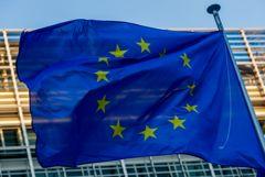 В ЕС сочли меры РФ безосновательными и оставили за собой право на ответ