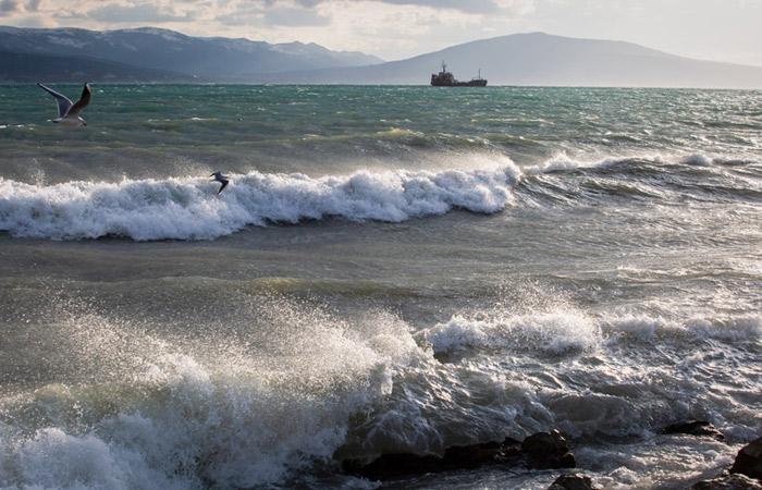 Доступ к данным о владельцах морских и речных судов РФ смогут ограничить по их просьбе
