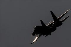 Российский Су-30 сопроводил три самолета ВВС Франции над Черным морем