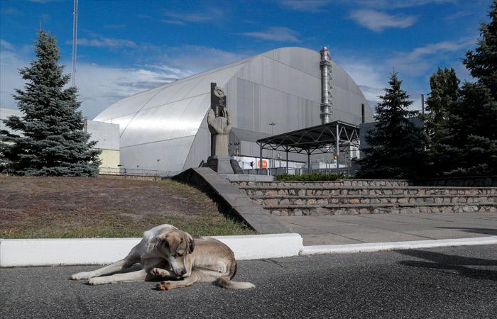 Украинский ядерный центр счел контролируемыми процессы под куполом ЧАЭС