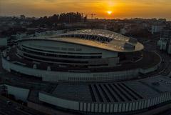 УЕФА перенес финал Лиги чемпионов из Стамбула в Порту