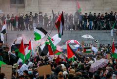 В Бельгии и Франции прошли манифестации солидарности с народом Палестины