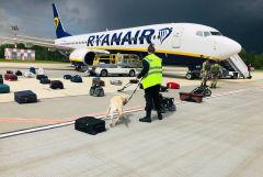 Движение ХАМАС опровергло причастность к инциденту с рейсом Ryanair