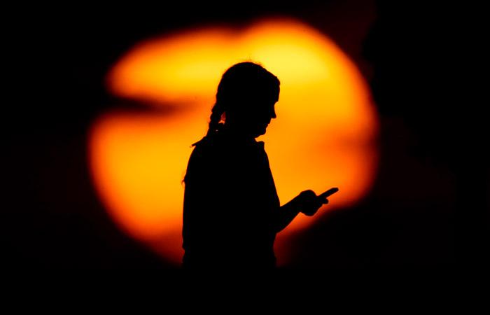 ФАС и операторы связи договорились о блокировке спам-звонков