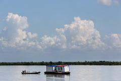 В реках Уссури и Амур временно запретили вылов рыбы